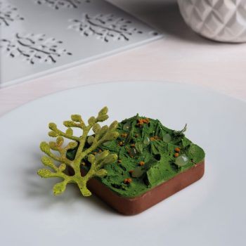 Molde de silicona Bonsai Pavoni GG030 2